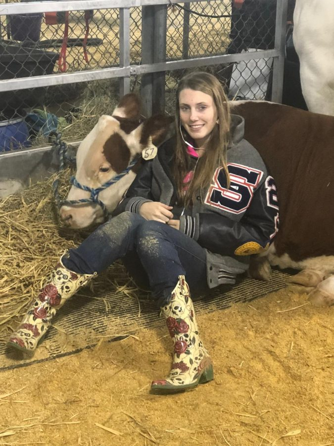 FFA President junior Brittany Creacy rests with her heifer Gracie at the Texas State Fair.