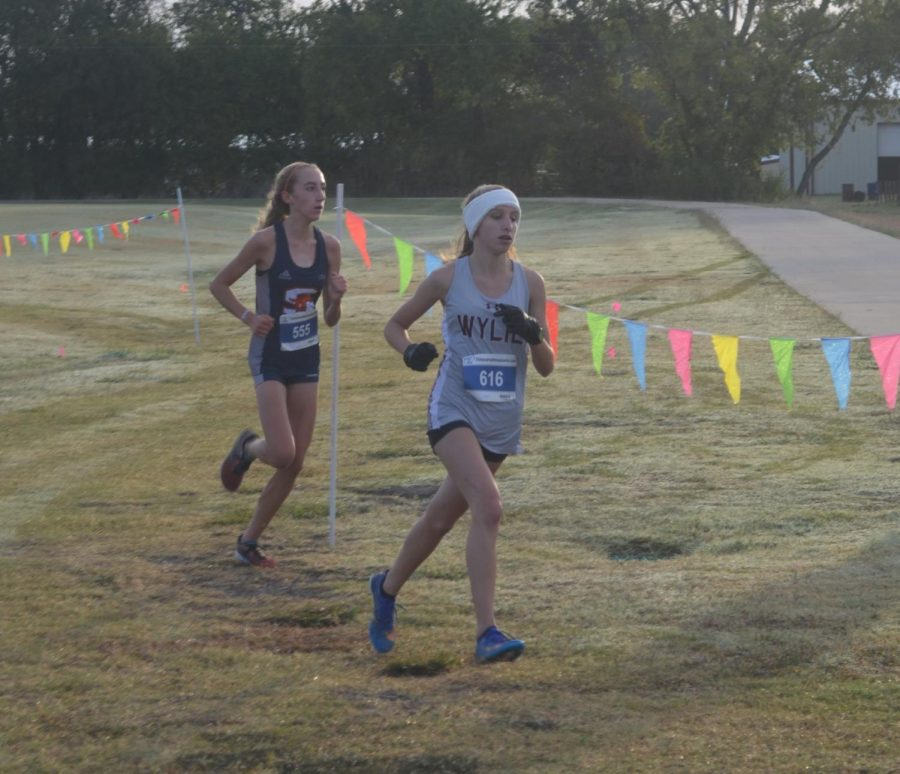 Cross country ends a successful season